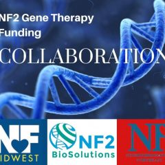https://www.nfmidwest.org/wp-content/uploads/2020/01/NF2-Research-Collaboration-240x240.jpg