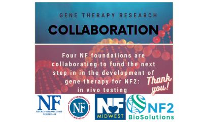 https://www.nfmidwest.org/wp-content/uploads/2020/12/NF2-Collaboration-400x240.png